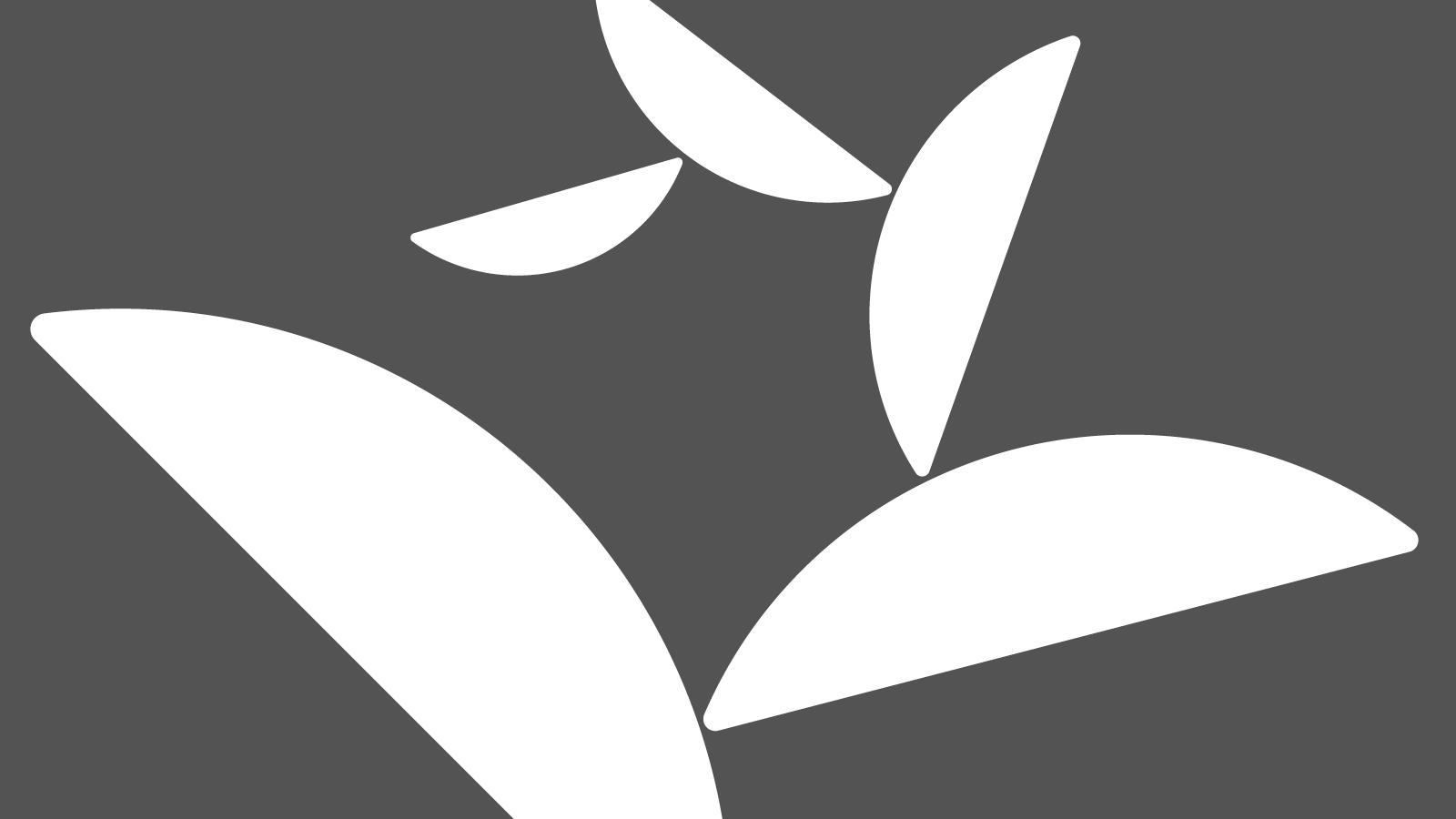 identity-design-logo-gym-gymnastics-british-five-typography-branding-milton-keynes-3